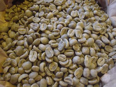 beans0711.jpg