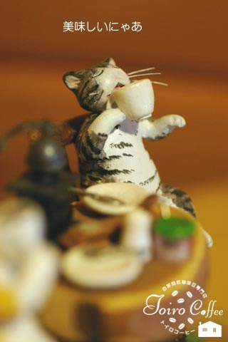 cat0811.jpg