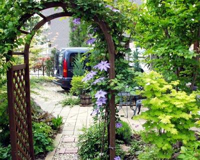 garden0805.jpg