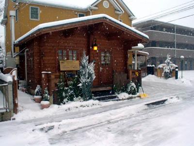 snow0801.jpg